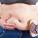 褐色脂肪細胞肥満腹