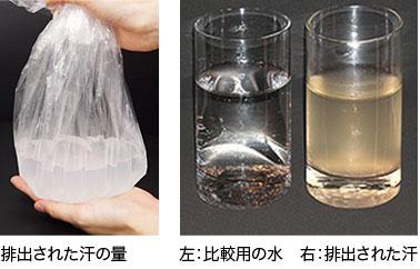 皮脂腺からの汗を徹底的に排出