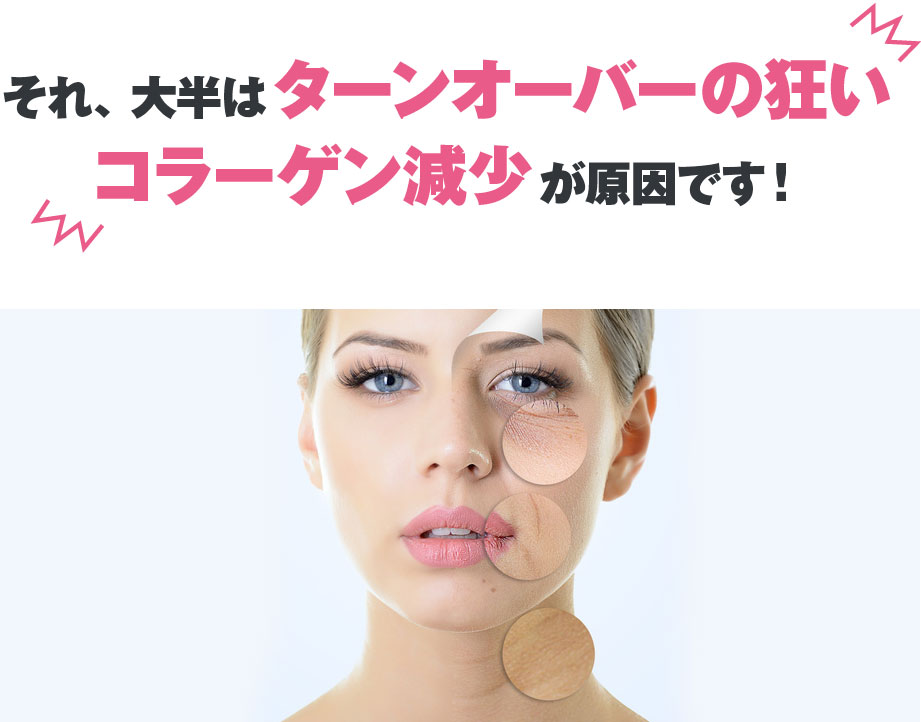 肌促進フォト美顔コース