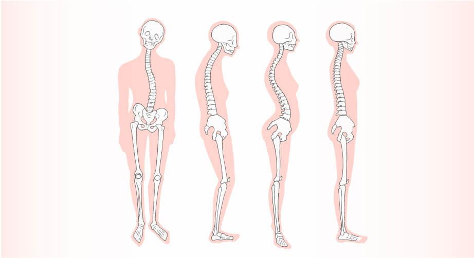 筋肉は修復され、ゆるみ、ねじれた骨格も整えます